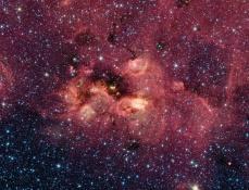 The 'Twitter' Nebula